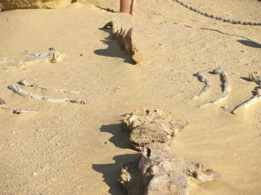 Wadi Hetan
